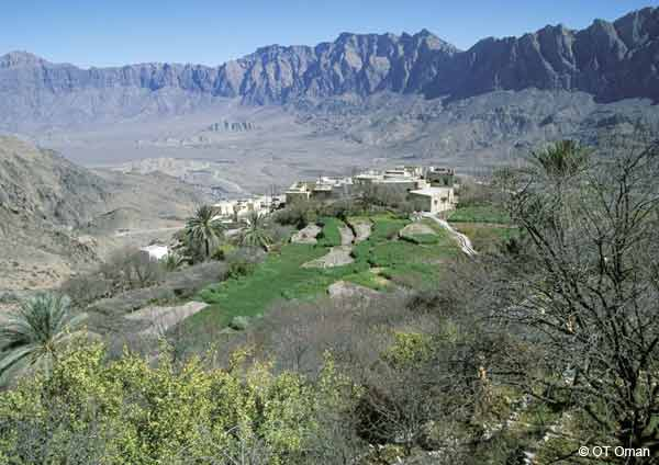Plateau de Sayq