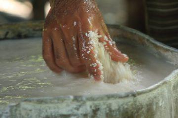 riz broyé feuille riz