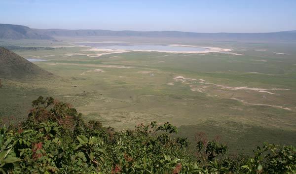 ngorongoro safari tanzanie