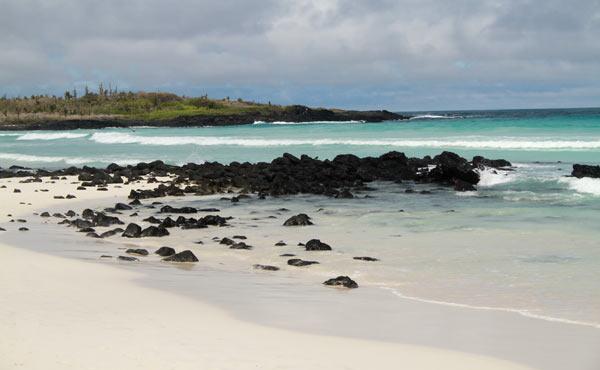 plage tortuga bay galapagos
