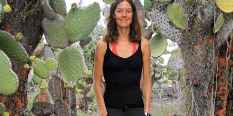 santa cruz cactus geants