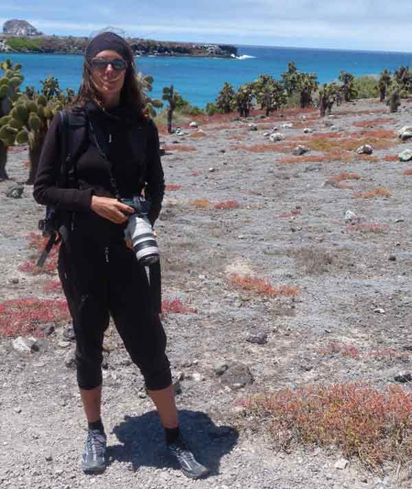 Photographie aux îles Plazas aux Galapagos