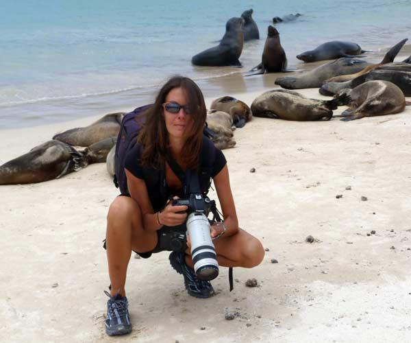 Proximité des lions de mer sur l'île de Santa Fé aux Galapagos