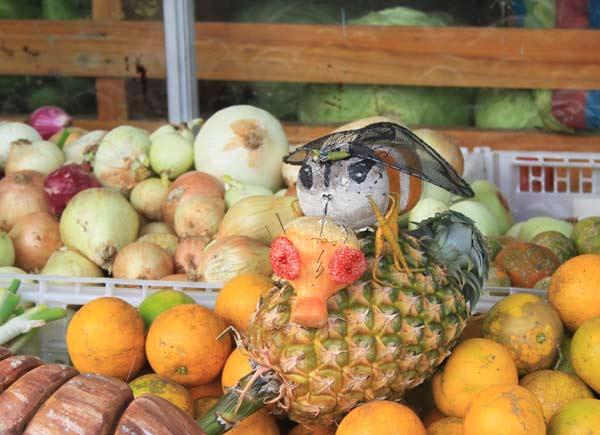 sculptures fruits galpagos