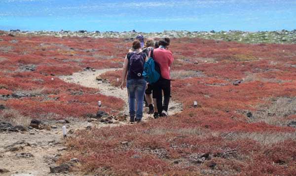 Excursion accompagnée aux Galapagos