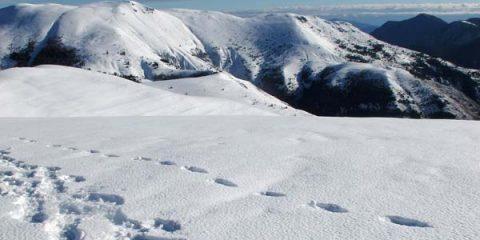 sommets enneigés vacances ski