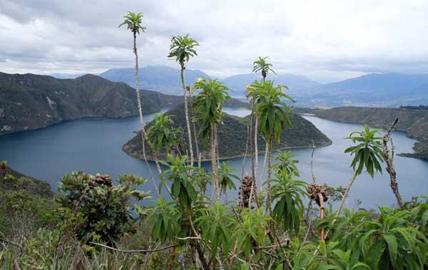 tour lagune cuicocha