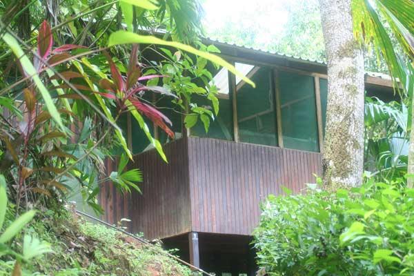 Voyage routard : nuit dans une cabane dans la jungle