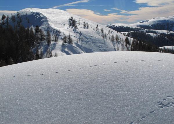 Plus belle randonnée : neige irisée