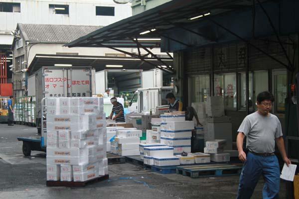 tsujiki market cargaisons poissons