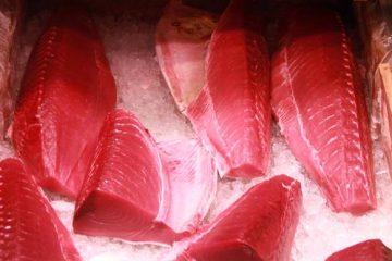 tsujiki market vente encheres