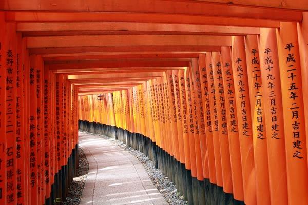 tunnel torii fushimi inari