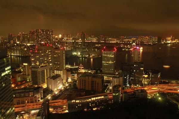 Tokyo vue comme un oiseau by night