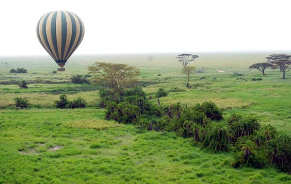 safari en afrique : montgolfière