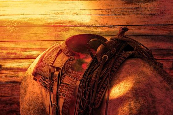 voyage espagne safari cheval