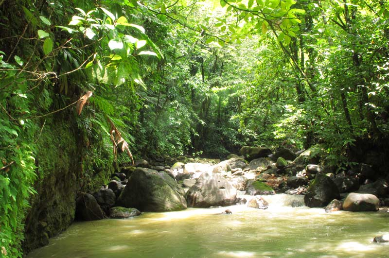 white river dominica