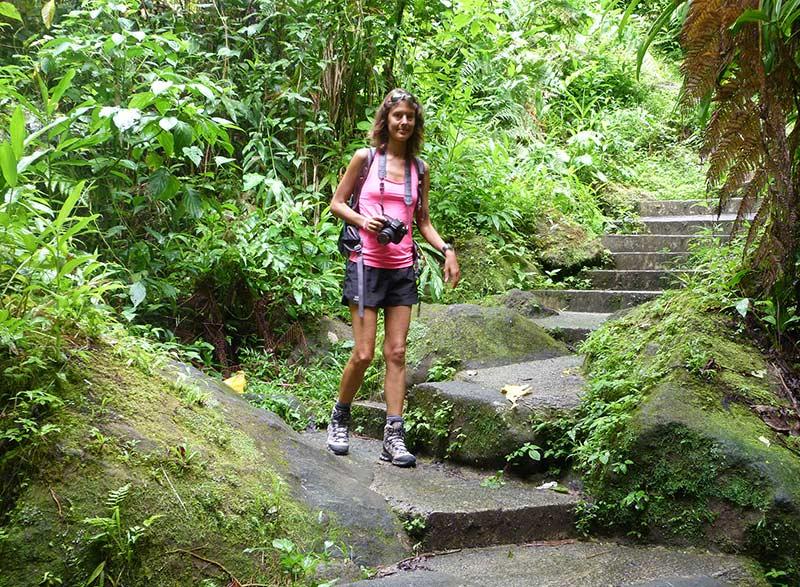 sentier Trafalgar Falls Dominica