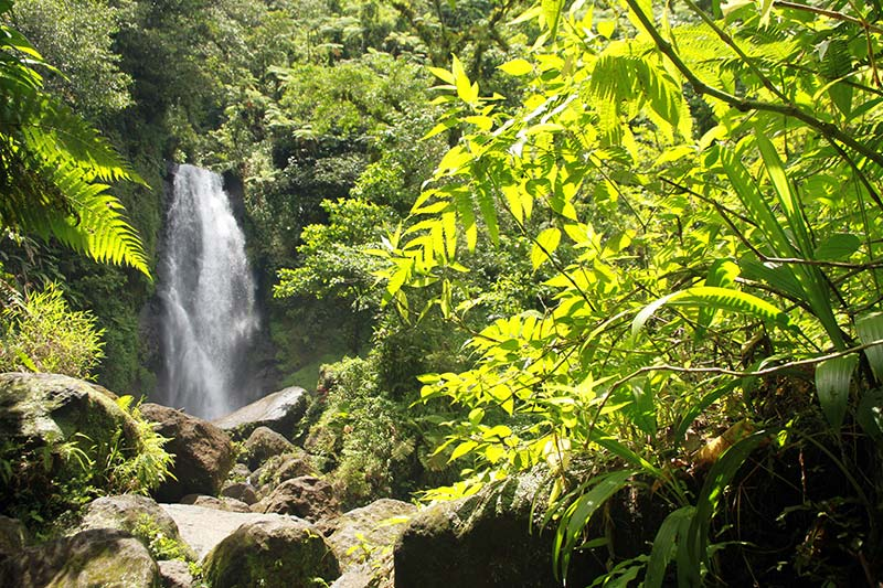 trafalgar falls dominica chute mere