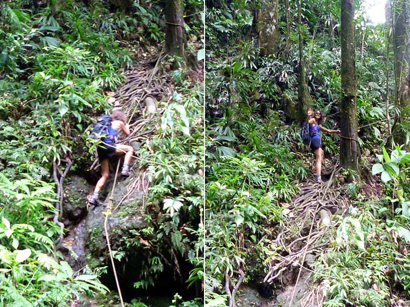 spanny falls parcours dominica