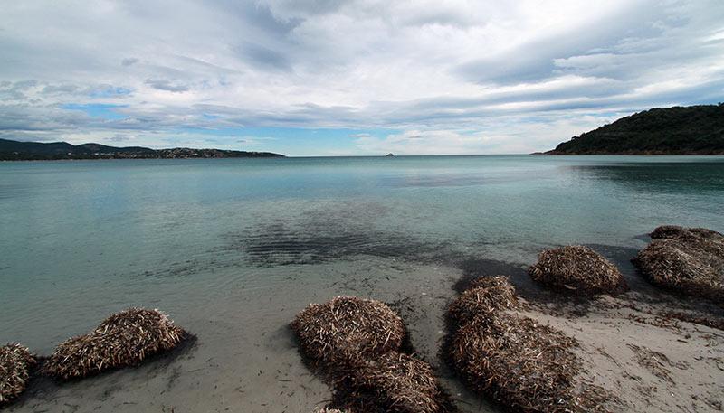 balade plage Pinarello Corse