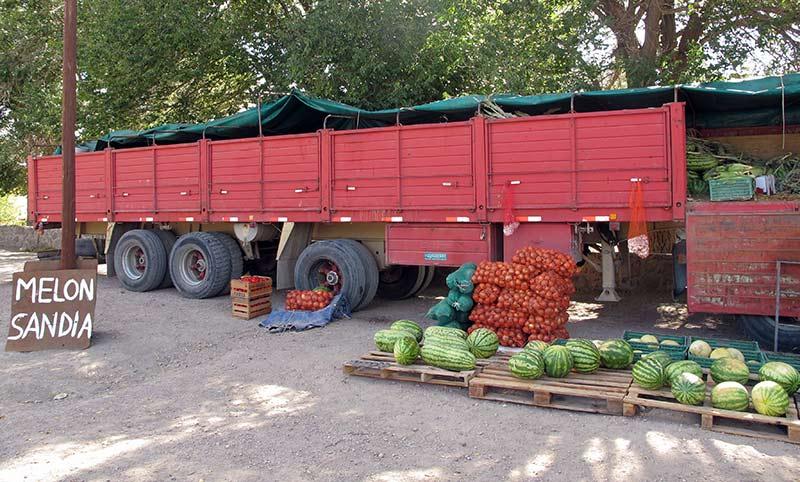 contrôles phytosanitaires en Argentine