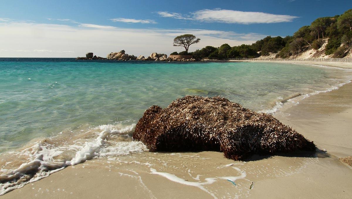 Corse en hiver plages