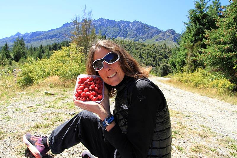 framboises El Bonson Patagonie