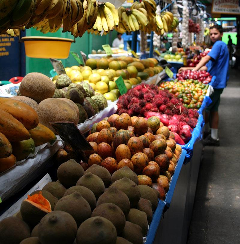 fruits exotiques costa rica