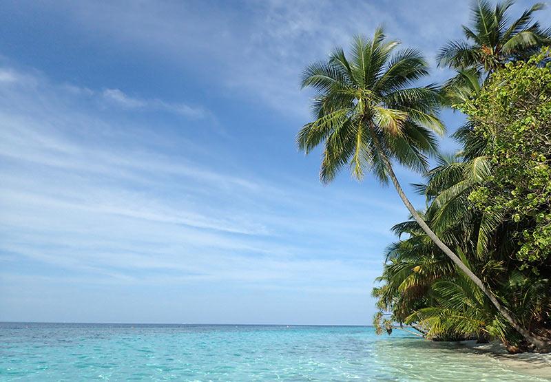 île hôtel séjour Vilamendhoo Maldives