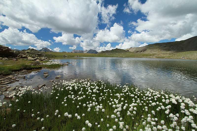 lac des Gardioles été serre-chevalier