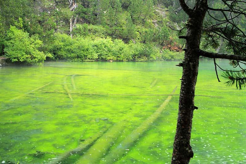 lac Vert été à Serre-Chevalier