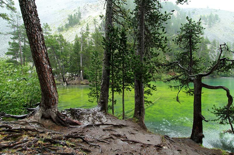 lago verde vallée étroite