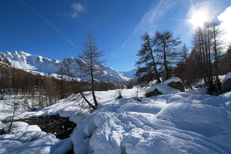 paysage alpes sud hiver