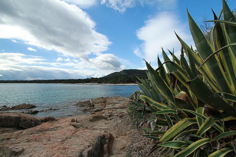 Pinarellu plage Corse