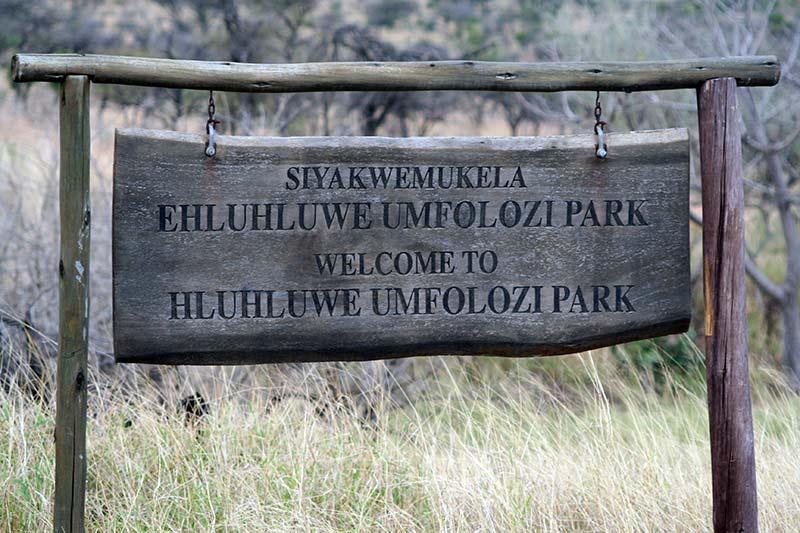 safari Hluhluwe Imfolozi