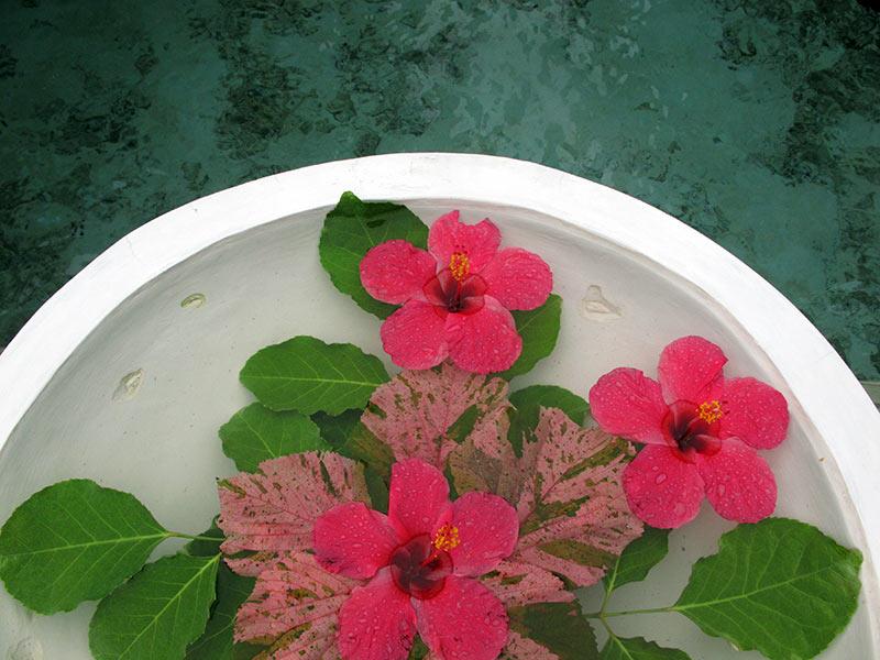 spa Vilamendhoo Island Resort