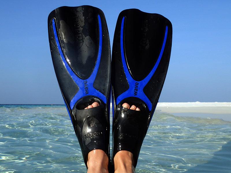 voyage aux Maldives palmes