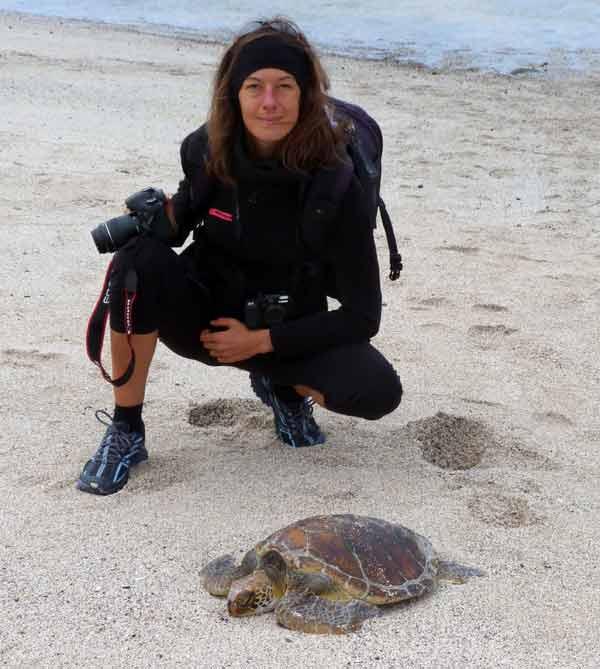 Galapagos : conditions de prise de vue d'une tortue marine à San Cristobal