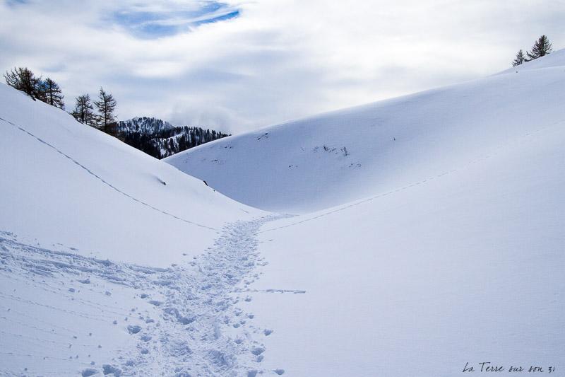 authion trace raquettes à neige
