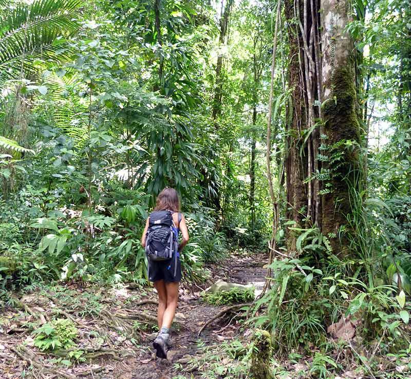 balade Spanny Falls Dominica
