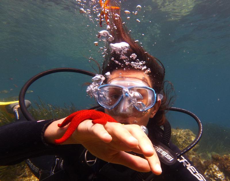 baptême de plongée étoile de mer