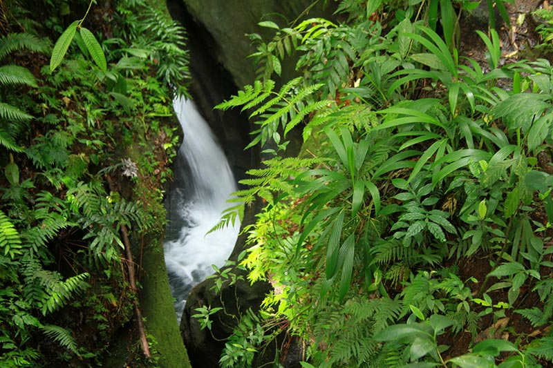 cascade Titou Gorge Dominique