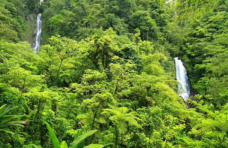 chutes jumelles trafalgar falls