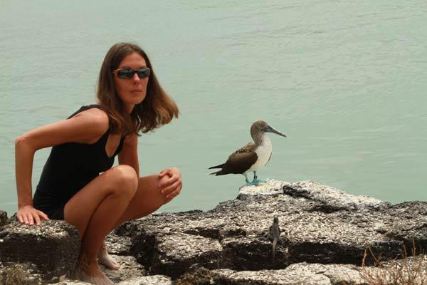 Distance entre le photographe et le fou à pieds bleus aux Galapagos