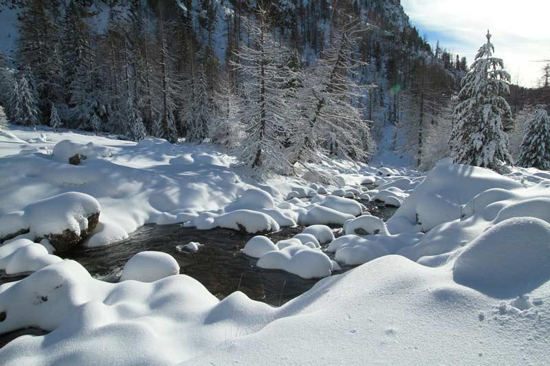 forêt du boréon hiver torrent