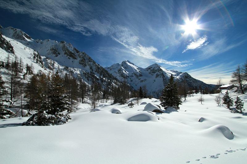 forêt du boréon sommets enneigés