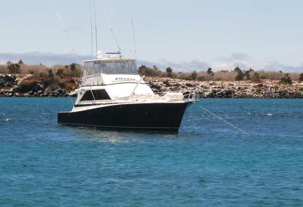 Bateau pour les Plazas aux Galapagos