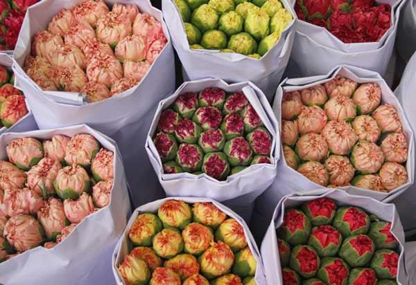 Bouquets de fleurs sur le marché