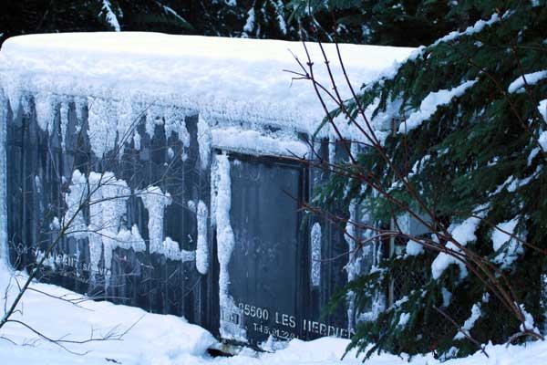 Chambre froide pour conserver la viande pour les loups