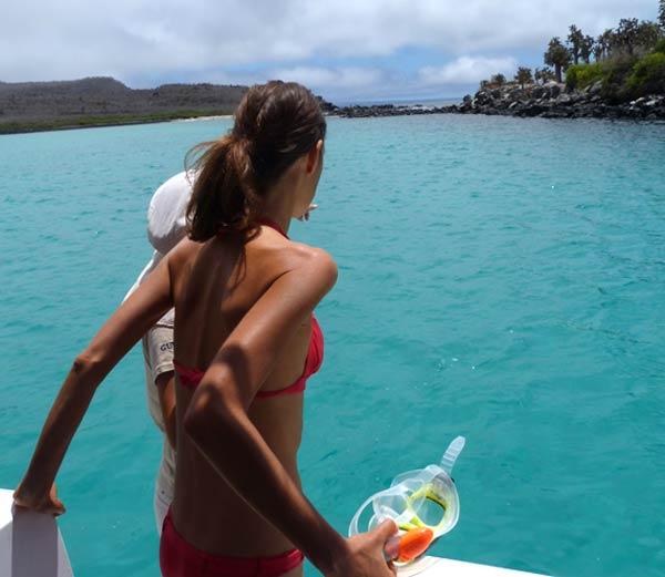 Galapagos : snorkeling